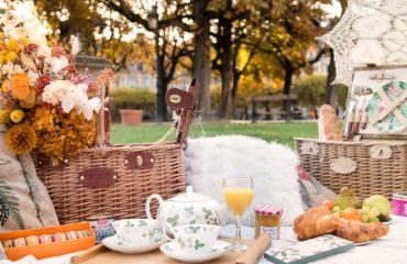 paris-proposal-picnic